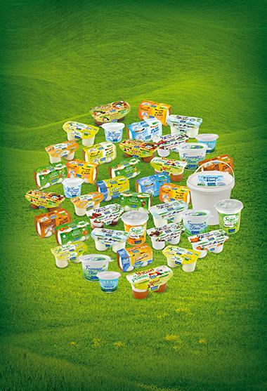Produits laitiers Bio